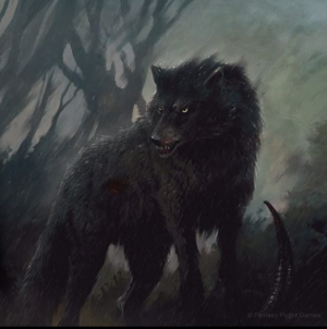 Direwolf A Wiki of Ice and Fire